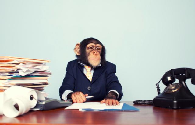 株式会社 猿/資産運用系メディアの編集長として、社会貢献しませんか?