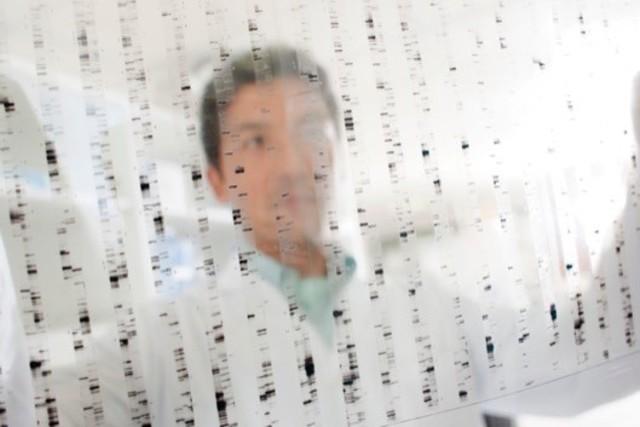パレクセル・インターナショナル 株式会社/Medical Imaging (治験画像の) Project Manager (メディカルイメージングサービス業務をマネジメントする仕事です。)