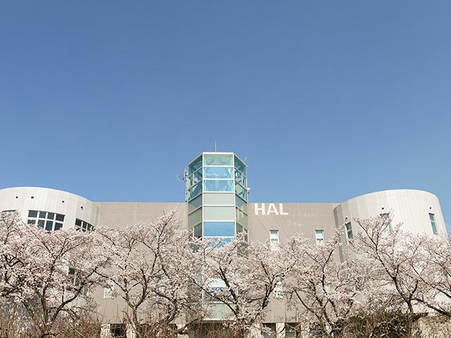 株式会社 ハル研究所/【フロントエンドエンジニア(経験者)】星のカービィシリーズの開発を手がけるハル研究所が新規事業で活躍するスタッフを募集!