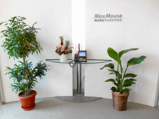 株式会社 マックスマウスの求人情報